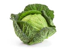Savoy cabbage Stock Photos