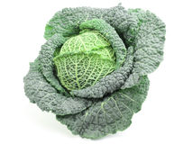 Savoy cabbage. Isolated on white Royalty Free Stock Photos