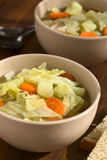 Savoy Cabbage, Carrot, Potato Stew Stock Image
