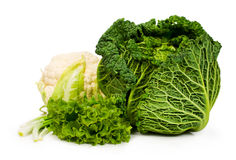 Savoy cabbage and cauliflower , lettuce and green onion Royalty Free Stock Photography