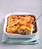 Savoy cabbage and chicken gratin. In a tin Royalty Free Stock Photography