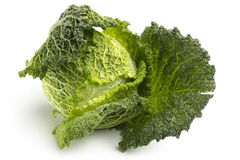 Savoy cabbage Stock Photos