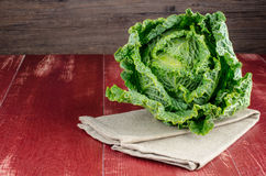 Savoy cabbage closeup Royalty Free Stock Image