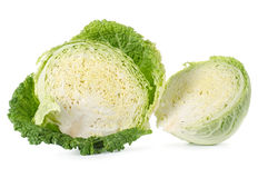 Savoy cabbage is in a cut Stock Image