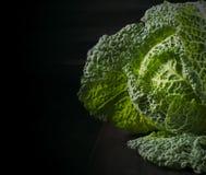 Savoy cabbage on dark background Stock Images