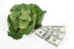 Savoy cabbage and dollars Royalty Free Stock Image
