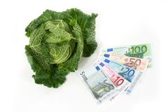 Savoy cabbage and euros Stock Photography