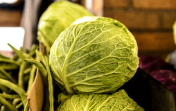 Savoy Cabbage Farmers market Stock Photography