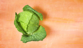 Savoy cabbage, flat lay Royalty Free Stock Images