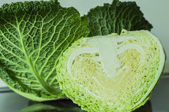 Savoy cabbage. Halved on Daylight Royalty Free Stock Image