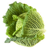 Savoy cabbage head Stock Photo