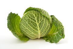 Savoy cabbage head isolated on white background Stock Photography