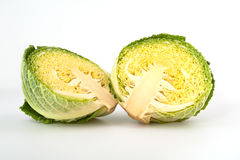 Savoy cabbage head isolated on white background Royalty Free Stock Image