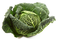Savoy cabbage isolated. On white royalty free stock photography