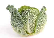 Savoy Cabbage isolated Stock Photos