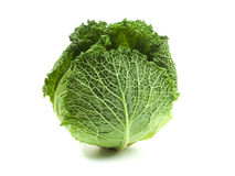 Savoy cabbage isolated on white stock images