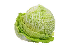 Savoy cabbage isolated on white Royalty Free Stock Photo