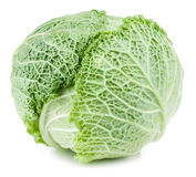 Savoy cabbage isolated. On white background Royalty Free Stock Image