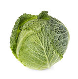 Savoy cabbage isolated on white. Background Stock Photos