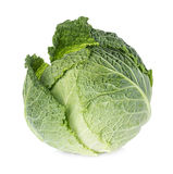 Savoy cabbage isolated on white Royalty Free Stock Image