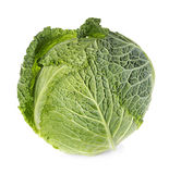 Savoy cabbage isolated on white Stock Photo