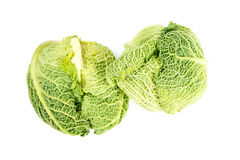 Savoy cabbage isolated on white background Royalty Free Stock Images