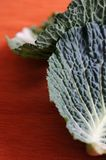 Savoy cabbage leaves Stock Photography