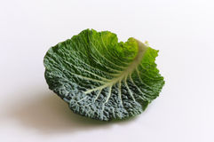 Savoy cabbage lief. On white background Royalty Free Stock Images