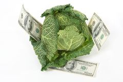 Savoy cabbage and money Stock Image