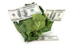 Savoy cabbage and money Royalty Free Stock Photo