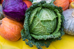 Savoy cabbage with other vegetables. Close-up of a cabbage with other organic vegetables in season stock photos