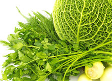 Savoy cabbage,parsley and onions Royalty Free Stock Image
