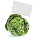 Savoy cabbage with price tag Royalty Free Stock Image
