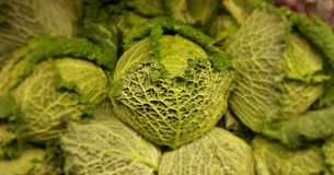 Savoy Cabbage. At a produce stand Stock Photo
