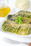 Savoy cabbage rolls on white dish. Stock Image