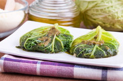 Savoy cabbage rolls on white dish. Stock Images