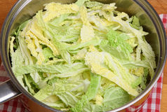Savoy Cabbage in Saucepan royalty free stock photo