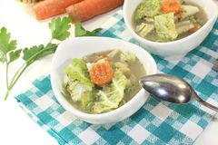 Savoy cabbage stew with parsley Royalty Free Stock Image