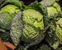 Savoy cabbage super food on market stall at organic farmers groc Stock Image