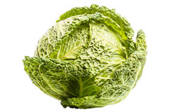 Savoy cabbage on white Royalty Free Stock Photos
