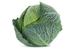 Savoy cabbage on white Stock Image