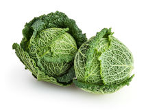 Savoy cabbages isolated on white background Stock Images