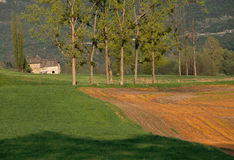 Savoyard house, poplars and orange field Royalty Free Stock Image