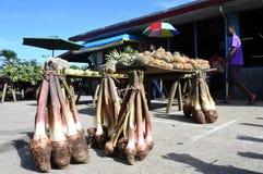 Savusavu marknad Vanua Levu Fiji arkivbild