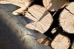 Saw circular saw blade at wood. Royalty Free Stock Photo
