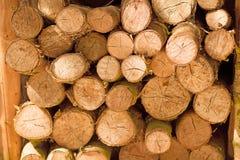 Saw cut logs Stock Photos