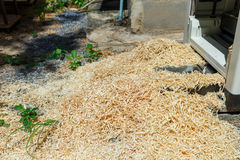 Saw dust. From Wood planer for DIY working Royalty Free Stock Photography