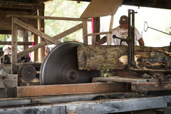 Saw Operator Feeds Wood Through Steam Sawmill Stock Photography
