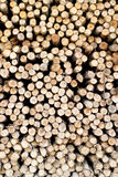 Saw timber prepared for winter heating season Royalty Free Stock Photos