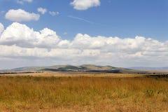 Sawanna krajobraz w parku narodowym w Kenya Fotografia Stock